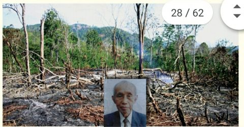 KERUSAKAN HUTAN INDONESIA